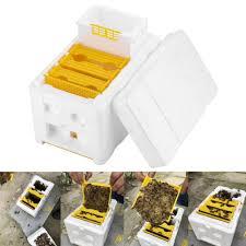 box beekeeping tools