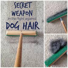 carpet rake. the easiest way to remove most dog hair from carpet | www.tealandlime. rake f