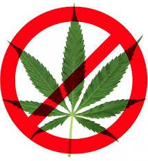 "edging closer to a marijuana breathalyzer"" things  nopot"
