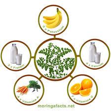 Image result for malnutrisi