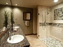 Bathroom Remodeling Tips Bathroom 65 Wonderful Basement Shower Ideas On Bathroom With The