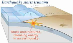maria s science spot science one world essay tsunamis or a subduction zone can cause a tsunami this happens when an oceanic tectonic plate is being forced down into the mantle by tectonic plate forces