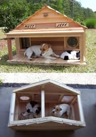 If you are looking for an cat dog house