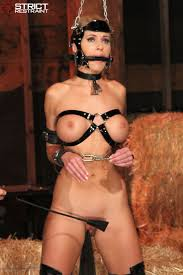 226 best BDSM images on Pinterest