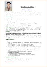 How To Write Resume For Job Application 24 Sample Of Curriculum Vitae For Job Application Pdf Basic How To 5