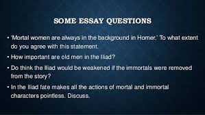 homeric themes 13 some essay questions
