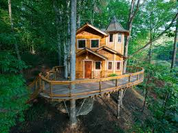 Decorating Residential Tree Houses Tree House Inside Ideas Simple