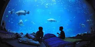 Hydropolis Underwater Hotel Dubai Ruritaniahotelcom