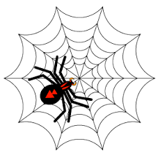 web drawing how do you make a spider web drawing in illustrator illustrator