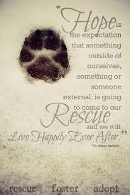 animal rescue quotes and sayings. Modren And Is E Exp Ctation That Something Outside Of Ourselves Or Someone  External Going To Come Our An We Will Give GescueVu0027 U0027 F9stpr To Animal Rescue Quotes And Sayings A