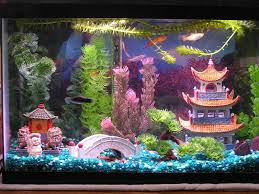 Fish Tank Accessories And Decorations Fish tank decorations is good aquarium tank accessories is good 47