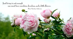 Spring Christian Quotes Best Of 24 Best Spring Quotes WeNeedFun