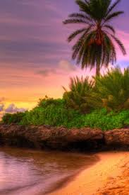 iphone 6 wallpaper beach.  Beach Beach Sunset Tropical Island IPhone 6 Wallpaper  Intended Iphone