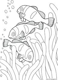 Free printable animal tig… elephant colouring pages … Ocean Life Coloring Pages Splendi Sea Animals Approachingtheelephant Sheet Animalsoring Of Clown Fish53dd Printable For Toddlers Under Madalenoformaryland