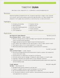 Car Salesman Resume Example Car Sales Resume Sample Salesman