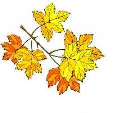 Znalezione obrazy dla zapytania dary jesieni