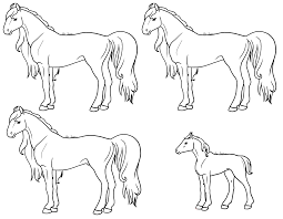 Lineart Coloriage Cheval Scotis Fr