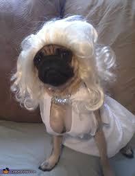marilyn monroe dog costume