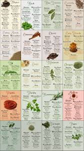 How To Use Herbs And Spices Chart Herb Spice Chart Common Sense Evaluation