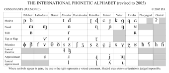 The Ipa Consonants Part I Place Of Articulation