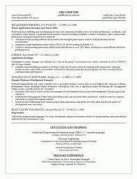 100 Sample Resume For Mainframe Production Support