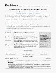 Computer Certificate Format Mesmerizing Microsoft Word Certificate Template Free Download Leadership