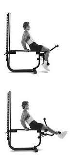 Exercises Soloflex