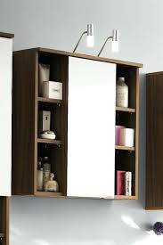 Small Picture Bathroom Mirror With Storage amlvideocom
