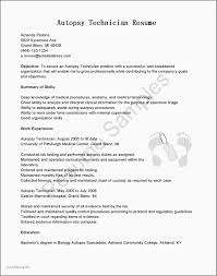 Cover Letter Fresh Examples Resumes Objectives Beautiful Resume