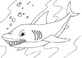 Take a look around, or sign up for our free newsletter with new things to explore. Free Printable Shark Coloring Pages For Kids