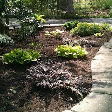 5 essential spring gardening tips
