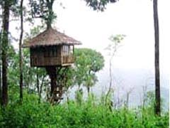 Top 9 Treehouse Rentals In Thailand  Book Your Unique Place To Treehouse In Thailand