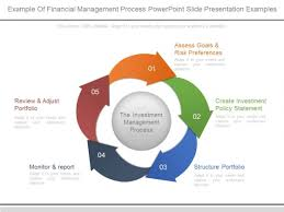 Example Of Financial Management Process Powerpoint Slide