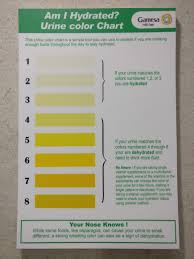 Army Hydration Chart My New Office Has A Urine Color Chart In The Restroom To