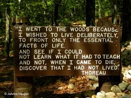 Thoreau Walden Quotes Impressive When A Place Is More Than A Place Walden Pond Massachusetts
