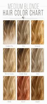 Copper Brown Hair Color Chart Blonde Hair Color Chart To Find The Right Shade For You