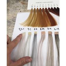 Hair Colour Level Chart Toning 101 Neutralizing Warmth At Every Level