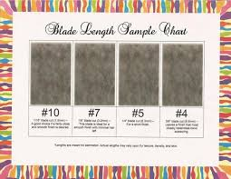 Hair Length Sample Chart Items Similar To Blade Length Sample Chart Premium On Etsy