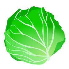 lettuce clipart. Unique Lettuce Clip Art Free Library Transparent Background On In Lettuce Clipart C