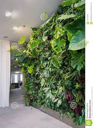 living green wall with flowers and plants vertical garden indoors