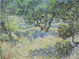 vincent van gogh s olive trees painting has a grasper stuck inside of it