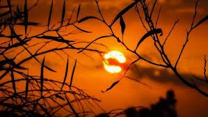 Image result for summer sun light
