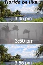Florida Quotes Classy Quotes About Florida Weather 48 Quotes