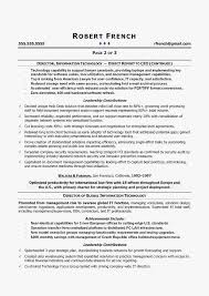 What Goes On A Resume Cio Sample Chief Information Officer