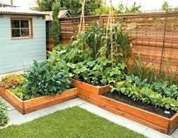 backyard vegetable garden design backyard vegetable gardening ideas shining backyard vegetable garden ideas fabulous wonderful small