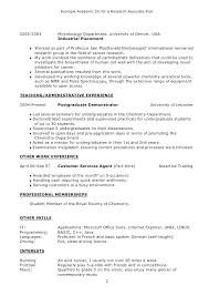 Undergraduate Resume Template Doc New Academic Cv Sample