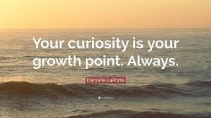 """Curiosity Quotes Danielle LaPorte Quote """"Your curiosity is your growth point Always 11"""
