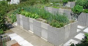 garden blocks. You May Want To Reconsider Using Concrete Cinder Blocks In Your Edible Garden \u2013 REALfarmacy.com