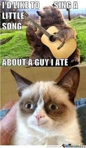 Grumpy cat on Pinterest | Grumpy Cat Meme, Grumpy Kitty and Cats via Relatably.com