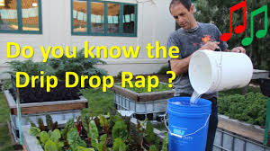how to water vegetables with a drip irrigation bucket